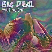 Swapping Spit by Big Deal