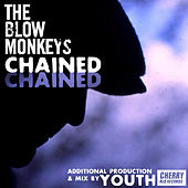 Chained by The Blow Monkeys