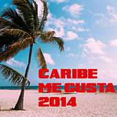 Caribe Me Gusta 2014 by Various Artists