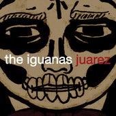 Juarez by Iguanas