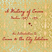 An Introduction To by Crime & The City Solution
