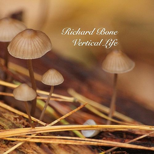 Vertical Life by Richard Bone