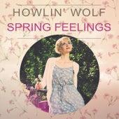 Spring Feelings von Howlin' Wolf