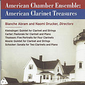 American Chamber Ensemble: American Clarinet Treasures by The American Chamber Ensemble