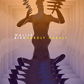 Hardly Hardly by Wallis Bird