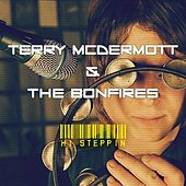 Hi Steppin by Terry McDermott