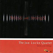 Sticks and Strings by Joe Locke
