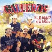 El Barrio de los Malditos by Los Galleros de Michoacan