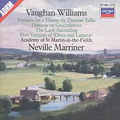 Vaughan Williams: Tallia Fantasia; Fantasia on Greensleeves; The Lark Ascending etc. by Various Artists