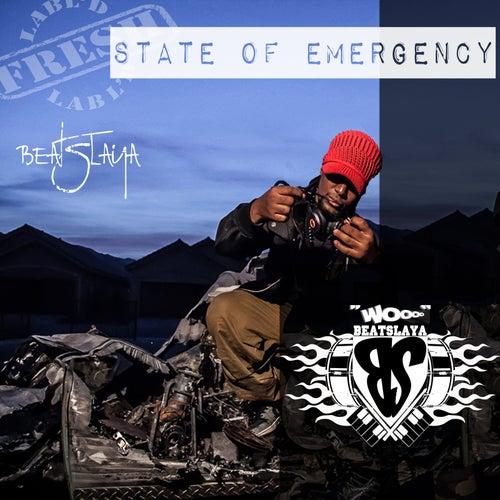 State of Emergency by Legend da Beatslaya
