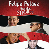Felipe Peláez 30 Grandes Éxitos by Various Artists