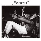 Warm Leatherette by The Normal