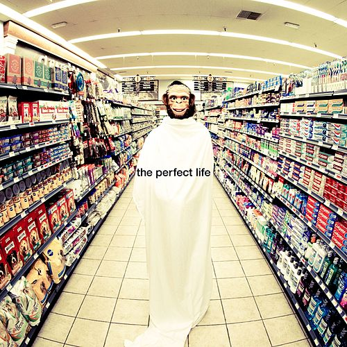 The Perfect Life by Moby