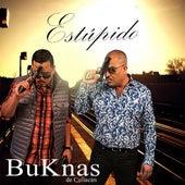 Estupido by Los Buknas De Culiacan