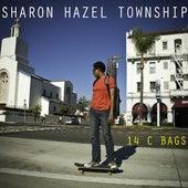 14 C Bags by Sharon Hazel Township