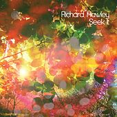 Seek It by Richard Hawley