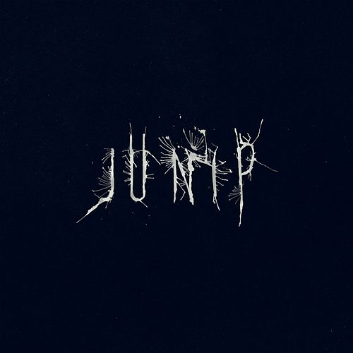 Junip by Junip