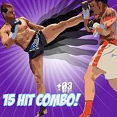 15 Hit Combo! Vol. 3 by Various Artists