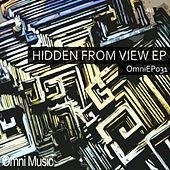 Hidden From View - Single by Fishy