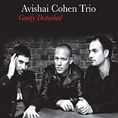 Gently Disturbed by Avishai Cohen Trio