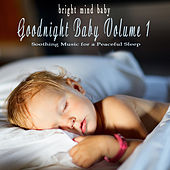 Bright Mind Kids: Goodnight Baby Volume 1, Soothing Music for a Peaceful Mind by Various Artists
