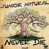 Never Die by Junior Natural