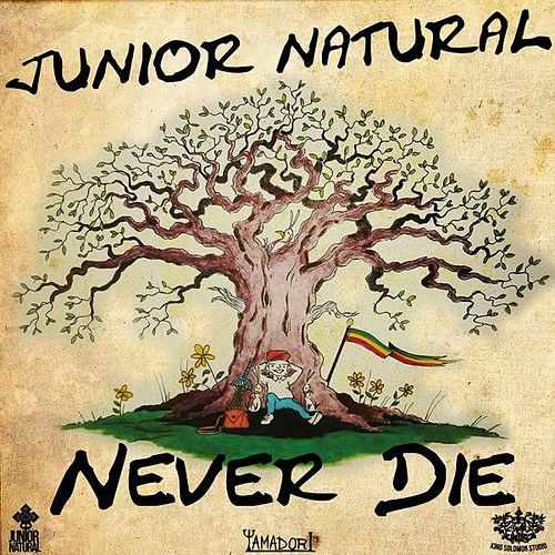 Never Die by Junior Natural