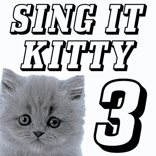 Sing It Kitty Advert (We Built This City On Rock and Roll) by Igx