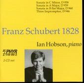 Franz Schubert 1828 by Ian Hobson