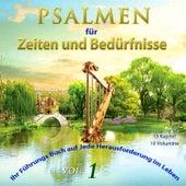 Psalmen für Zeiten und Bedürfnisse, Vol. 1 by David & The High Spirit