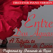 Entre Dos Aguas by Fernando Rojas