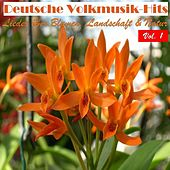 Deutsche Volksmusik Hits - Lieder über Blumen, Landschaft & Natur, Vol. 1 by Various Artists