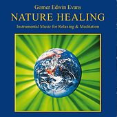 Nature Healing (Instrumental Music for Relaxing & Meditation) by Gomer Edwin Evans