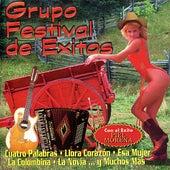 12 Super Exitos Bailables by Grupo Festival De Exitos