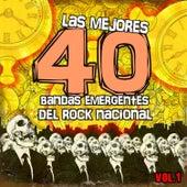 Las Mejores 40 Bandas Emergentes del Rock Nacional by Various Artists