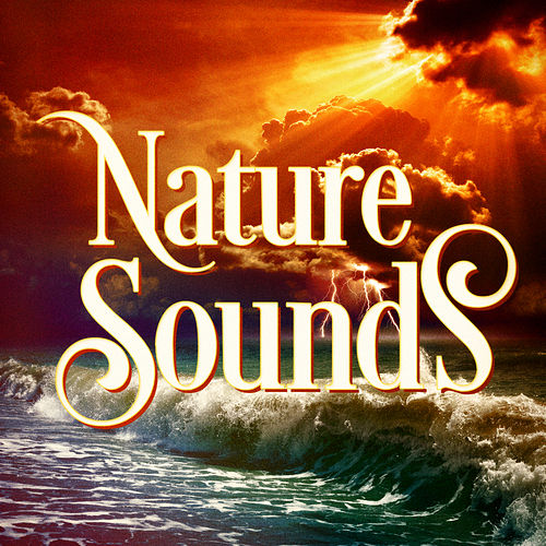 Beautiful Nature Music and Sounds by Nature Sounds Nature Music