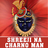 Shreeji Na Charno Man by Meena