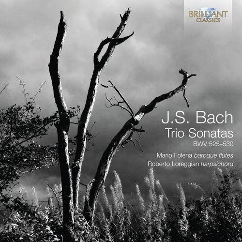J.S. Bach: Trio Sonatas, BWV 525-530 by Mario Folena
