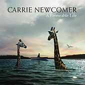 A Permeable Life by Carrie Newcomer