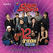 12 Grandes Exitos  Vol. 2 by Chicos De Barrio