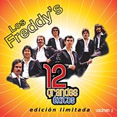 12 Grandes Exitos Vol. 2 by Los Freddy's