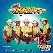 12 Grandes exitos Vol. 2 by Los Tigrillos