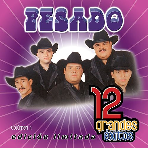 12 Grandes exitos  Vol. 1 by Pesado