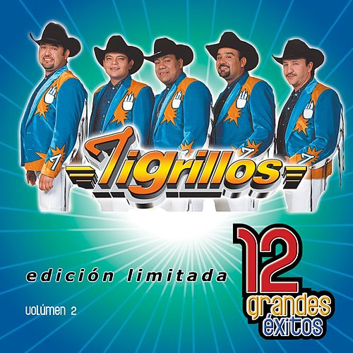 12 Grandes exitos Vol. 1 by Los Tigrillos
