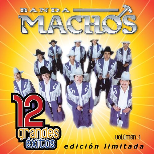12 Grandes exitos Vol. 1 by Banda Machos