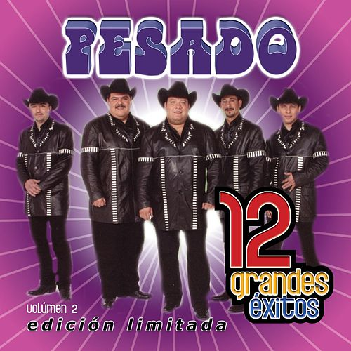 12 Grandes exitos  Vol. 2 by Pesado