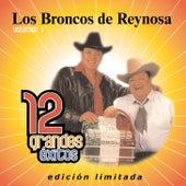 12 Grandes exitos Vol. 1 by Los Broncos De Reynosa