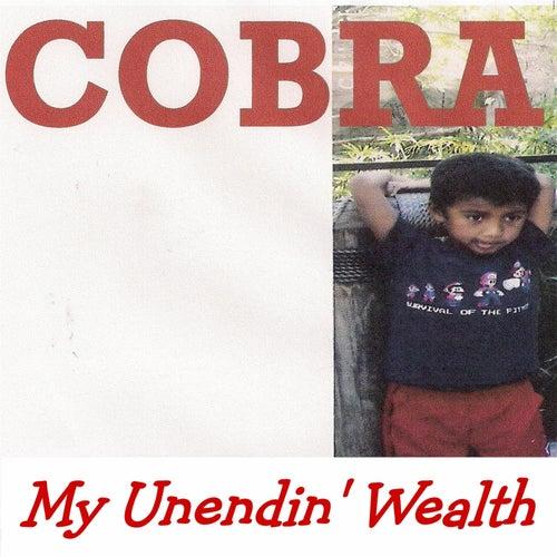 My Unendin' Wealth by Cobra