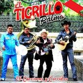 26 Canciones y Corridos by El Tigrillo Palma
