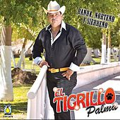 Banda, Norteno y Sierreno by El Tigrillo Palma